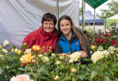Marie Large and Abbie Large from Large's Rose Nursery. Photo: Malinda Boniface.