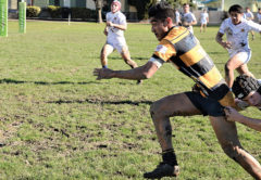 MBC winger Clyde Paewai attempts to shrug off a Timaru tackler as he heads for the tryline. Photo: Peter Jones.