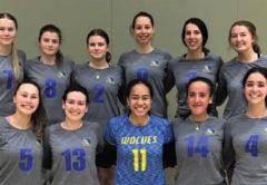 The Capital Wolves volleyball team, comprising a mix of players from Wellington and Marlborough. Photo: Supplied.