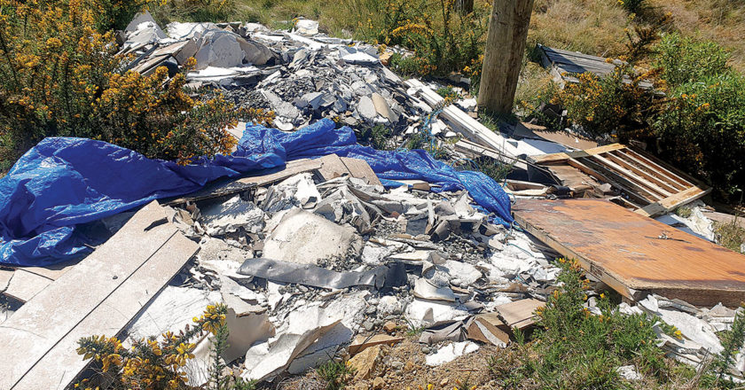 Children's toys and household rubbish, along with what should be beloved family pets are being discarded along the Port Underwood Rd. Photo: Supplied.