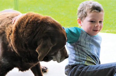 Robbie Parkes with his family dog has a secured a diabetic alert dog to from Australia. Photo: Paula Hulburt.