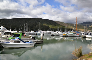 Havelock Marina is set to benefit from a new recycling hub. Photo: Paula Hulburt.