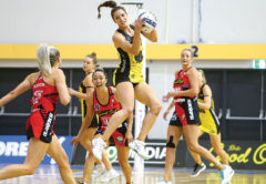 Pulse wing defence Karin Burger rises high to claim possession at Stadium 2000. Photo: Supplied.