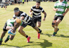 Renwick winger Mesake Bula dives in at the corner to score a try during Saturday's Awarua Park Rugby 7s tournament. Photo: Peter Jones.